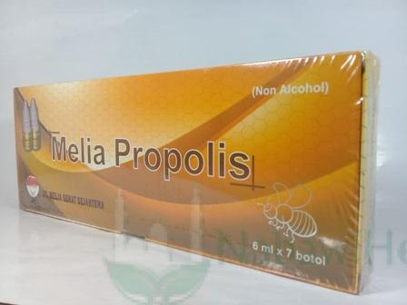 Propolis Melia Gold (dus kuning emas)