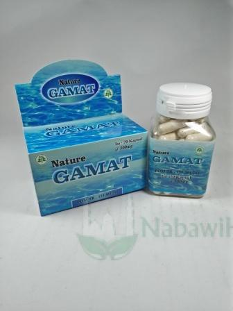 HRB340-Nature Gamat