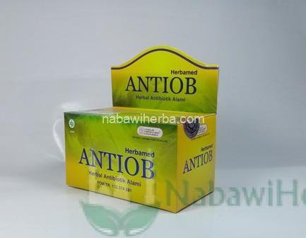 Antiob (Herbal untuk Antibiotik)