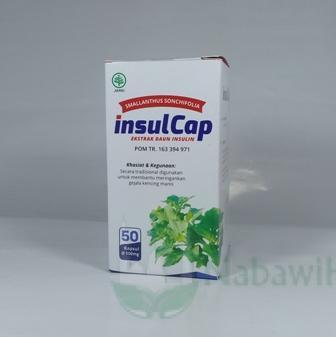 InsulCap (Kapsul Insulin)