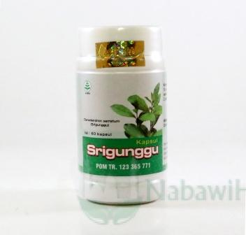 Srigunggu Tazakka
