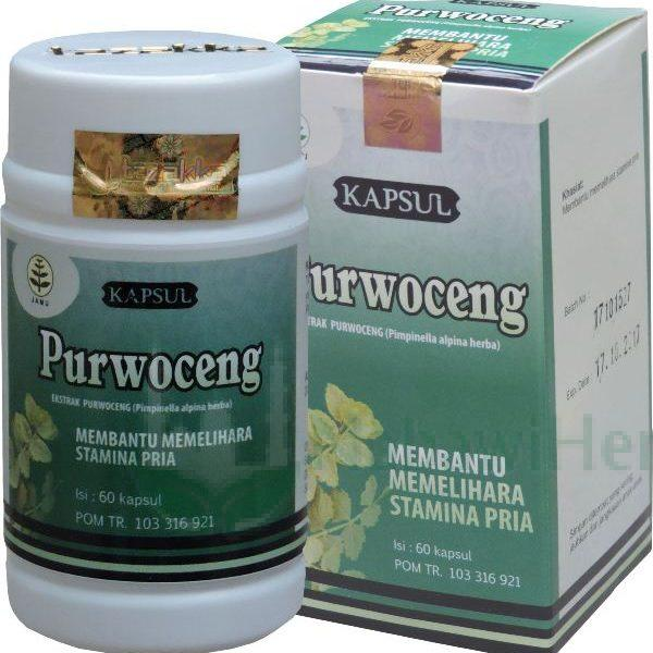 purwoceng